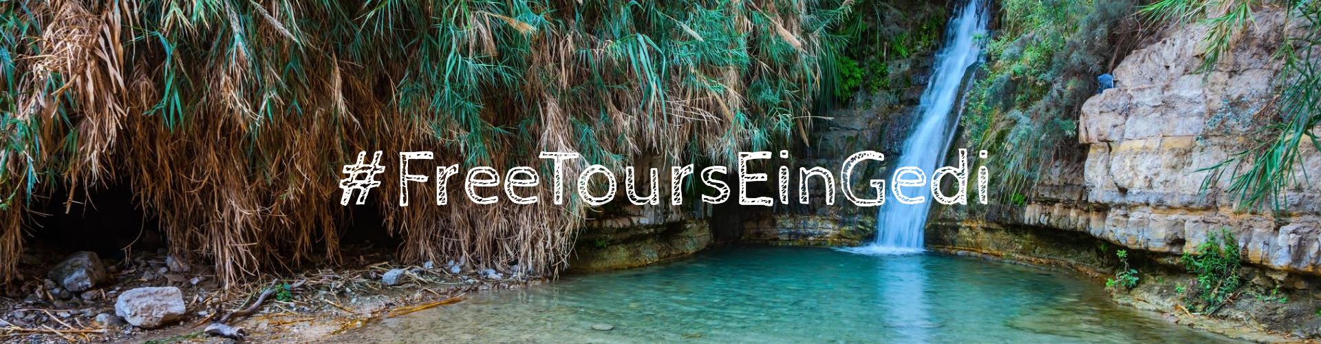 free tours ein gedi